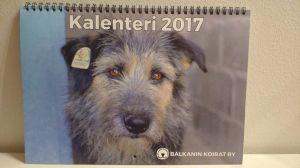kalenteri
